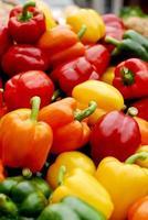 tomates anciennes multicolores photo