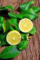 citron frais photo