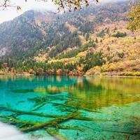 Beauté automne en gros plan de jiuzhaigou photo