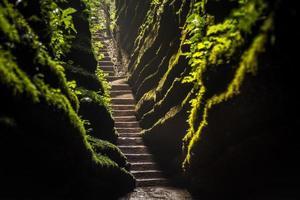 forêt de pierre rouge photo