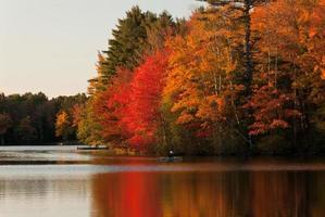 automne couleur magique photo