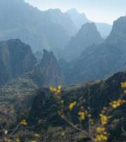 Phoenix, Arizona. paysage de sentier apache