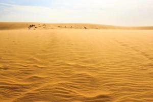 dune de sable de mui ne photo