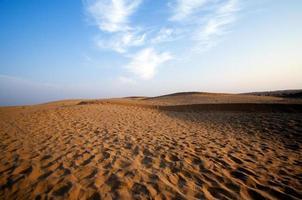 désert, dunes de sable au coucher du soleil