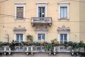 vieilles fenêtres nobles