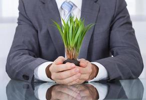 homme d'affaires avec de l'herbe verte photo