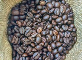 sac de fond de café