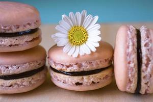macarons français photo