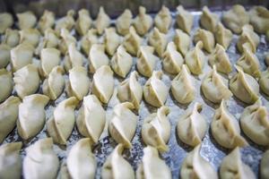 Dumplings photo