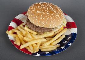 hamburger sur assiette en papier style amérique
