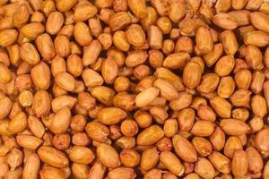 arachide fraîche