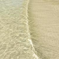 surface de l'eau