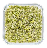 brocoli et pousses de radis photo