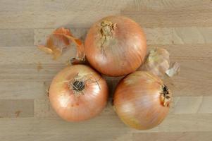 oignons bruns photo