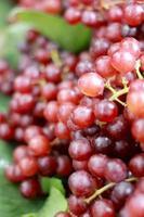 raisins frais avec des feuilles vertes sur un fond. photo