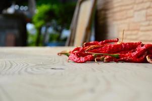 poivron rouge photo