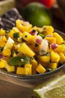 salsa de mangue maison fraîche photo