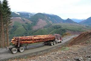 camion forestier photo