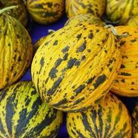 melons sur le marché