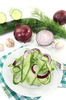 salade de concombre aux oignons rouges photo