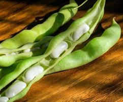 haricots blancs, macro photo