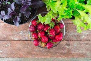 feuilles de basilic violet et feuilles de laitue aux fraises sur bois photo
