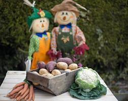 épouvantails et légumes du jardin