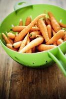 mini-carottes photo