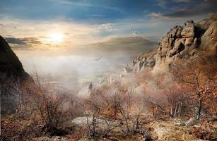 oiseaux sur les rochers d'automne