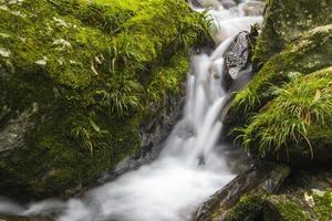 rochers et ruisseaux