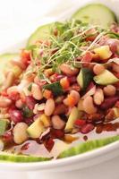 plat de saladin aux haricots