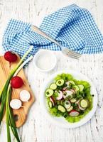 salade de printemps aux concombres et radis