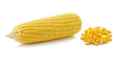 maïs isolé sur fond blanc photo