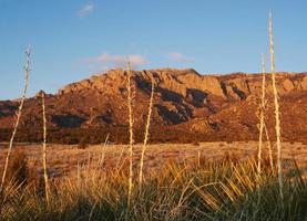 Coucher de soleil sur la montagne du désert du sud-ouest photo