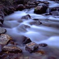 rivière cottonwood photo