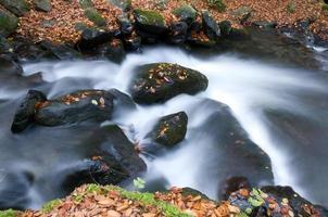 rivière d'automne photo