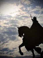 le roi louis à st. louis, mo photo