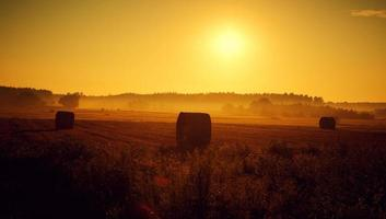 coucher de soleil d'été photo