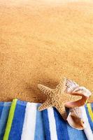 bordure de plage d'été photo