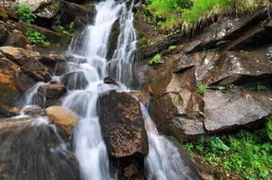 ruisseau de printemps
