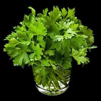 persil herbe aromatique en verre photo