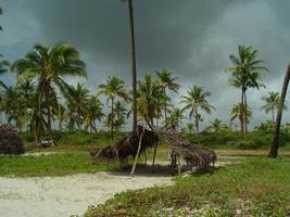 Tanzanie photo