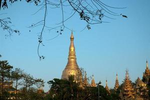 pagode shwedagon, yangon. photo