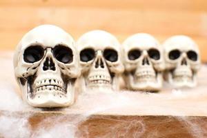 crânes d'halloween photo