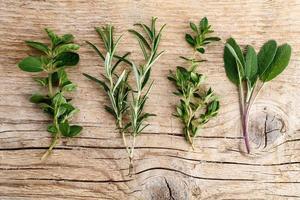 herbes fraîches assorties