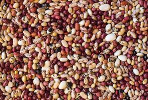 haricots de différentes couleurs et espèces