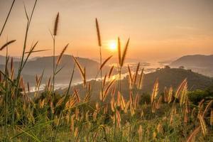 paysage au lever du soleil photo