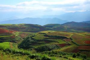 paysages de terrain