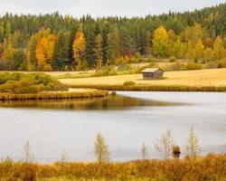 beau paysage d'automne photo