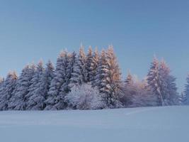 paysage de neige hiver